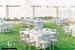 Εξοπλισμός Εκδηλώσεων & Δεξιώσεων Γάμου - AVANT GARDE Events